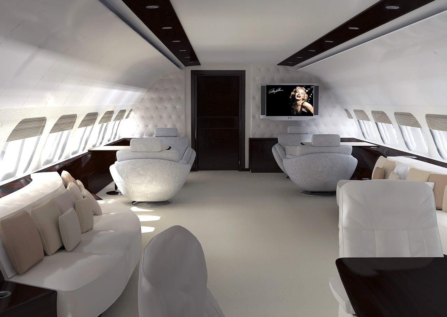 Business and private jet interiors